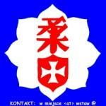 Kluby i Organizacje Judo
