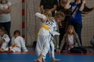 110 IV Turniej Judo O Puchar Wojta Gminy Debowiec 2016
