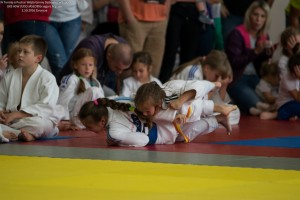 128 IV Turniej Judo O Puchar Wojta Gminy Debowiec 2016