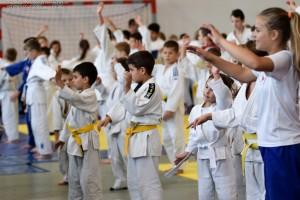 2 IV Turniej Judo O Puchar Wojta Gminy Debowiec 2016