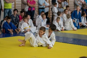 96 IV Turniej Judo O Puchar Wojta Gminy Debowiec 2016