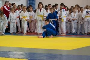 9 IV Turniej Judo O Puchar Wojta Gminy Debowiec 2016