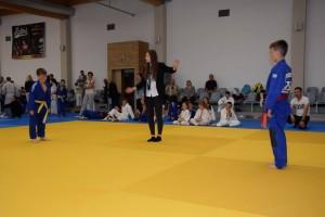 Festival Sportu 2017 092