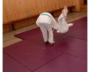 Judo Tarnowiec00012