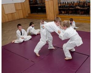 Judo Tarnowiec00026