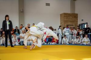VII Mistrzostwa Jaslo w Judo106