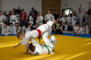 VII Mistrzostwa Jaslo w Judo115