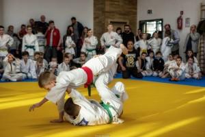 VII Mistrzostwa Jaslo w Judo116